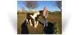 Geille des Pres Secs ~ 6 mths Smoky Black Tobiano Filly - Owned by Ludovic Roux -France